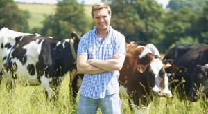 Dairy Industry Energy Efficiency Electrical